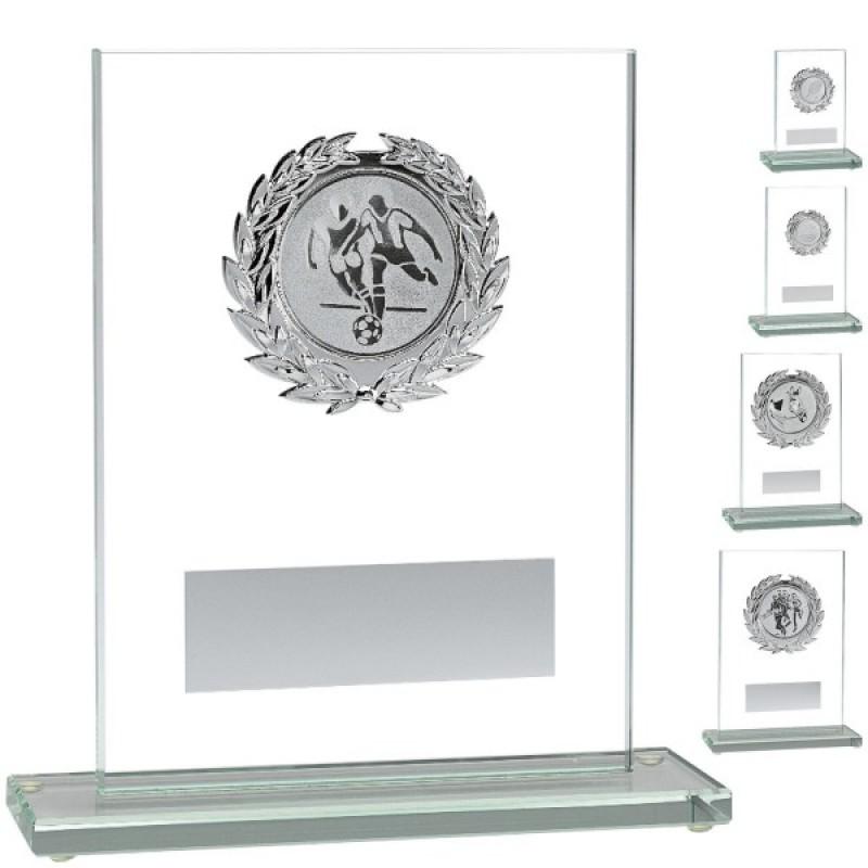 Стеклянный дисплей с серебряным держателем эмблемы