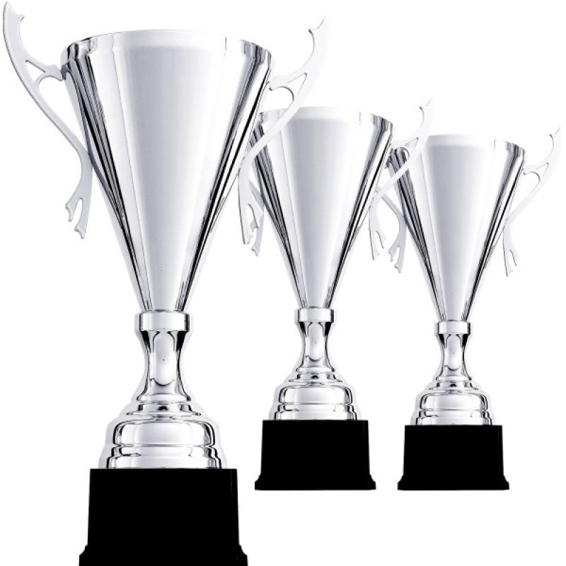 Благородный трофей в серебре с ручками
