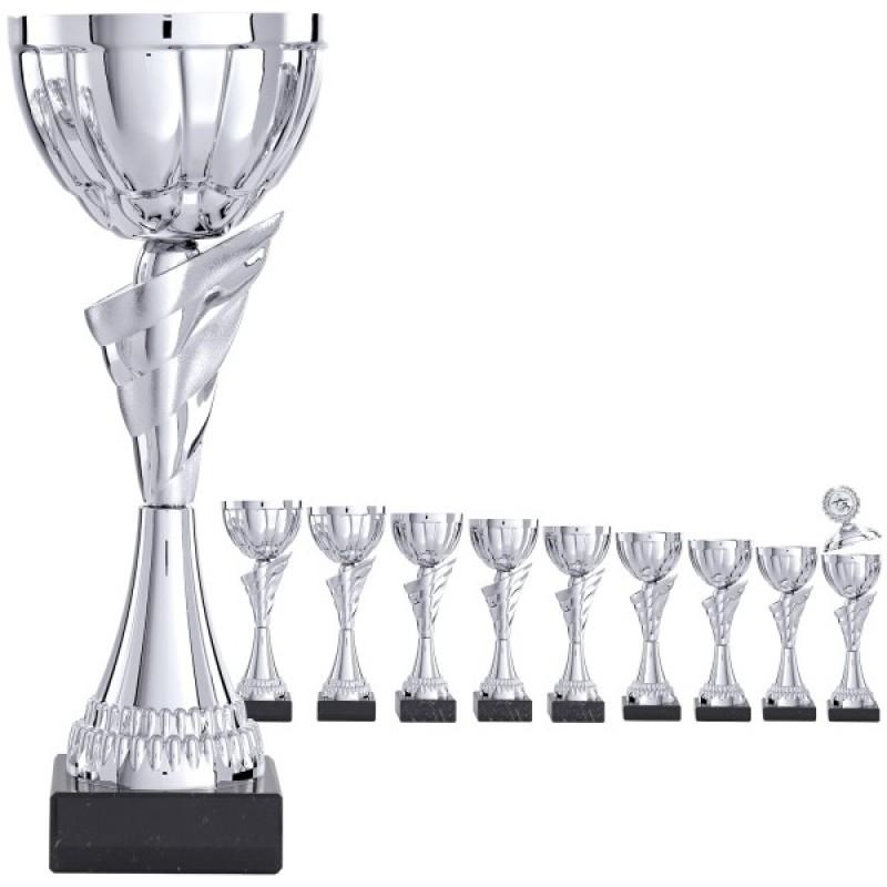 Благородный трофей в серебряном дизайне